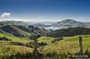 NZ 2624 - Nueva Zelanda - Peninsula Otago (Jano Escuer) Tags: nuevazelanda oceanía