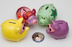 Piggy Banks (Mukumbura) Tags: community pigs animals piggybanks saving thrift cash money diversity pot potofmoney coins