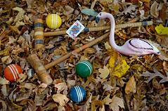 Croquet With the Queen of Hearts (BKHagar *Kim*) Tags: bkhagar fairytale aliceinwonderland croquet game balls mallet flamingo chalkware vintage antique pink challenge julesphotochallengegroup
