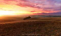 Toscane Lauragaise (mvdc0w) Tags: toscane lauragais tarn france europe italy landscape vanguard sunrise sun travel light paysage