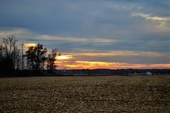 (danalcreek) Tags: brownco ohio sky clouds hues colors sunset farm blue orange pink yellow nikon d5100 18x55mm field corn cut trees