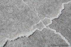 28-Botswana_2016 (Beverly Houwing) Tags: abstract africa botswana desert detail dry edge endless flat kalahari makadigkadipans massive pattern polygons pristine ridges saltpan white