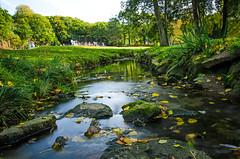 Vallon du Stang-Alar (nolyaphotographies) Tags: brest vallon finistere bretagne france nikon lac etang jeux parc botanique espace vert automne feuille arbre foret eau roche