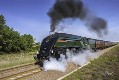 union of South Africa web (Mike Clark 100) Tags: africa speed train smoke south union railway steam borders mikeclark eastlothian