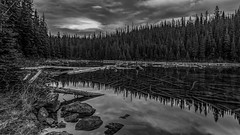 Sticks and Stones (murph le (Mostly away)) Tags: trees light bw lake nature water monochrome clouds forest reflections landscape sticks stones branches textures hdr jaspernationalpark canon6d
