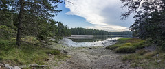 DC3282  DSC07014NX5Na  Inlet © 2015 Paul Light (Paul Light) Tags: trees summer sky panorama nature water grass clouds landscape outdoors quiet maine newengland panoramic photomerge serene southwestharbor acadianationalpark shipharbornaturetrail reallyrightstuffpanokit