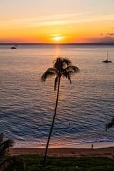Ka'anapali Sunset, Maui - 6 (www.bazpics.com) Tags: ocean trees sunset sea beach island hawaii hotel islands us honeymoon view unitedstates pacific dusk balcony maui palm hi viewpoint lahaina kaanapali