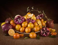 10/2015 Citrus Fruits (inspired of Gerrit Van Honthorst) (bess_bg) Tags: fruit fruits stilllife stillife rustic citrus pomegranate lemon food indoor