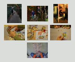 Lotti + Nachbars Hund, Blumen fr die Mutti, warten auf den Bus Sammelkarten im Sackerl, neue Karten einsortieren, Verpackungen Sammelmappe Liste: fehlen 2 von 180: 009, 117, Mau Mau spielen, Kuverts zusammenkleben (hedbavny) Tags: door autumn light dog game kitchen station austria mirror abend licht construction play hand background album spiegel herbst tapis wrap sunny unterwegs jeans hund improvisation montage envelope wait kche weaver sonnig verpackung morgen tagebuch tr collect weber spiel loom benji tapestry cardgame xiv haltestelle teppich lotti nachbar hintergrund warten maumau rundgang liste webstuhl kartenspiel sammeln workingroom analogie werkstatt tapisserie kleben waitingtime haushalt dokumentation spielkarten wartezeit 1140 kuvert weavingloom sammelmappe teppichweber hedbavny unterlegung