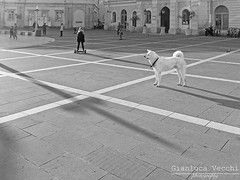 Black Kid / White Pet (Gianluca Vecchi Photography) Tags: street travel urban blackandwhite bw dog pet texture monochrome lines square daylight kid travels day child outdoor streetphotography slovenia piran bnw yugoslavia pirano portoro portorose