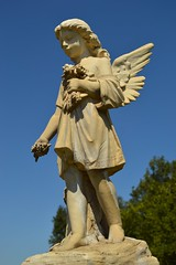 Flower girl (radargeek) Tags: merced ca california angel cemetery pate