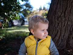 Jules (Dahrth) Tags: gf1 gf120 panasoniclumixgf1 lumixmicroquatretiers lumixμ43 micro43 microfourthirds raw bébé baby yellow doudoune dawn cute mignon jardin garden portrait