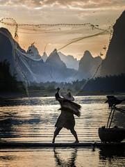 Li River Fisherman (Tom Kilroy) Tags: liriver fishermen china yangshuo xingping river