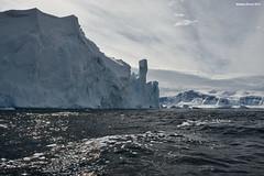 Iceberg Castle (naturalturn) Tags: ice iceberg tabulariceberg cave andvordbay andvord bay antarcticpeninsula antarctica image:rating=5 image:id=191358
