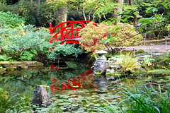 The Japanese garden of The Hague (Frans Schmit) Tags: japanesegarden japansetuin clingendael autumn herfst denhaag thehague fransschmit redbridge red rood brug