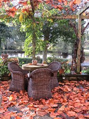 5805 Autumn Patio (Andy - Busyyyyyyyyy) Tags: 20161110 autumncolour bhday13 broughholiday ccc chairs harome leaves lll ooo orange patio pergola ppp seats sss tables thepheasantinn ttt yorkshire