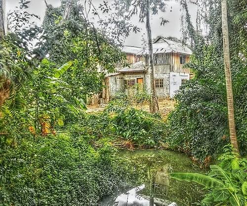 Hidden in the jungle in Lamai, Koh Samui #kohsamui #Thailand #samui #thaiart #Lamai