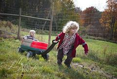 HEAVE. (grilljam) Tags: autumn october2016 rockyridgeorchard applepicking ewan 7yrs seamus 4yrs