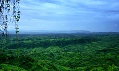 Sajek (Sajeeb75) Tags: outdoor landscape green forest hill sky blue travel trees bangladesh