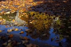 Parc des Bastions (silvia.mincarelli1) Tags: water reflet ginevra autumn foglie pozzanghera riflesso light bastions parc genve autumnleave