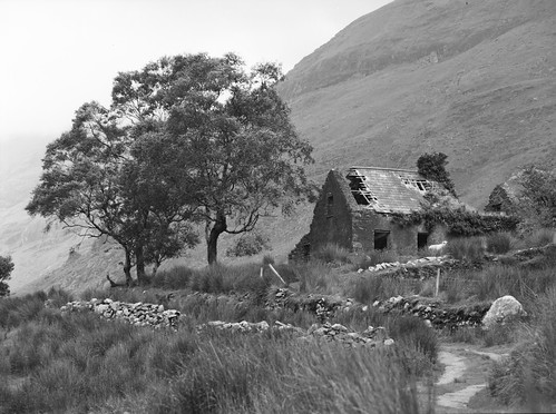Ireland (analog): abandoned cottage