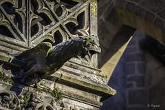 Gargouille (Emmanuel Faur) Tags: gargouille limoges cathdrale