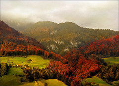 Red heart (Katarina 2353) Tags: landscape autumn alps switzerland katarina2353 katarinastefanovic film nikon