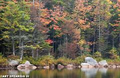 Adirondack Fall Colors And Reflection (freshairphoto) Tags: adirondack park lake reflection autumn fall trees rocks sis artspearing nikon d80 18105 zoom tripod leaves colors