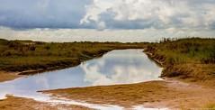 Platier d'Oye - Pas de Calais (jymandu) Tags: platierdoye platier plage manche pasdecalais nature