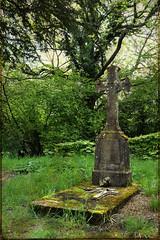 Emouvante vieille croix (florence.V) Tags: france normandie calvados 14 beuvronsurauge chapelle chapellesaintmicheldeclermont cimetire croix