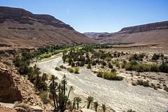 Road to Merzouga #7 (Matthew on the road) Tags: merzouga marocco maroc september 2016 september2016 travel travelling matthewontheroad road roadto roadtomerzouga desert sun