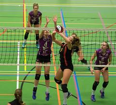 1B260595 (roel.ubels) Tags: vv utrecht eurosped galgewaard volleybal volleyball 18 finale nationale beker