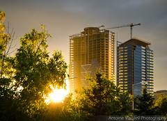 30.09.2015 (AVasilev) Tags:        sunset buildings skyscraper millenium center sofia september
