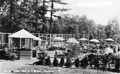 Terras tegenover Nol in 't Bos Prentbriefkaart ca 1935 Collectie Fien Bos (Historisch Genootschap Redichem) Tags: terras tegenover nol t bos prentbriefkaart ca 1935 collectie fien