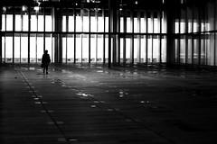 In front of the lit windows (pascalcolin1) Tags: paris13 bnf nuit night lumires lights fenetres windows femme woman photoderue streetview urbanarte noiretblanc blackandwhite photopascalcolin