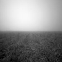 Finally only the emptiness stays (Csaba Kovacs) Tags: lyukkamera pinhole series finally only emptiness stays végül csak az üresség marad