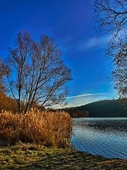 Am Baggersee (Blende2,8) Tags: reutlinge himmel baggersee ufer bume see schilf