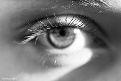 Focus (MichaelaSMillion) Tags: grey black white blackandwhite eye eyes clear clarity human girl person face focus perspective different light dark contrast lashes eyelashes optics optical pupil iris