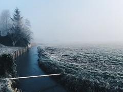 Winter wonderland (SLM88) Tags: