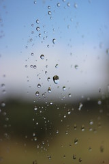 Drops (maikrofunky) Tags: window ventana la drops lluvia rainbow bokeh gotas raku oneshot plana notreatment laplana fundacio noefect 35mm20 canon600d santamaríadoló