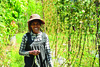 Roun March (6) (undpclimatechangeadaptation) Tags: climatechange resilience adaption womenempowerment humancapital foodsecurity farmingtechnique climatechangeadaptation napafollowup povertyreductin