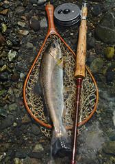 yamame (chin-toy) Tags: stalker flyfishing rise winston yamame hardy fiberglassrod system5 3m
