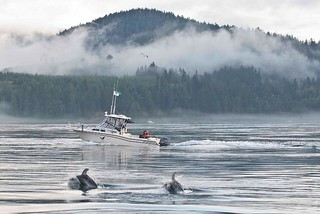 British Columbia Luxury Fishing & Eco Touring 46