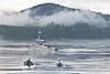 British Columbia Luxury Fishing & Eco Touring 46