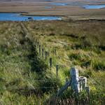 Fence & Lochs