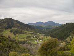 260 - Vue depuis le centre de la Nouvelle-Zélande