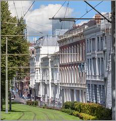 BUILDINGS ON ROPES (ESOX LUCIUS) Tags: street city urban holland rotterdam taco architectuur binnenstad museumkwartier
