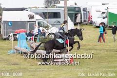 163L_0038 (Lukas Krajicek) Tags: military czechrepublic cz kon koně vysočina vysoina southbohemianregion blažejov dvoreček všestrannost dvoreek