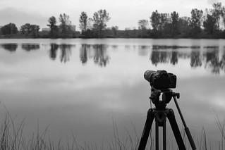 Shooting Serenity