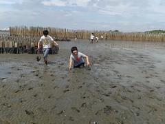 10.12.2015-AngloSingapore-BangPu-100 trees (15) (pattfoundation2014) Tags: thailand education mangrove treeplanting bangpu pattfoundation anglosingapore